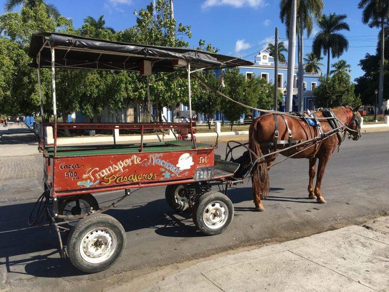 passenger horse cart A 1